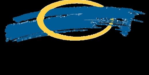 Narus Logo
